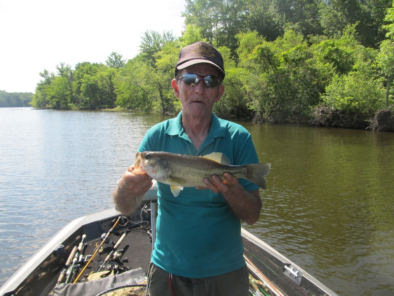 Blog kentucky lake tennessee for Kentucky lake fishing guides